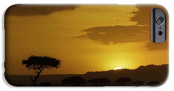 Safari iPhone Cases - African Sunrise iPhone Case by Sebastian Musial