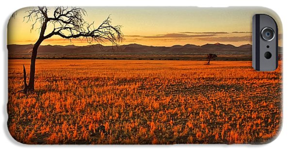 Landscape With Mountains iPhone Cases - African Sunset iPhone Case by Kate McKenna