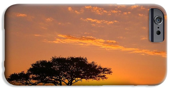 Safari iPhone Cases - African Sunset iPhone Case by Sebastian Musial