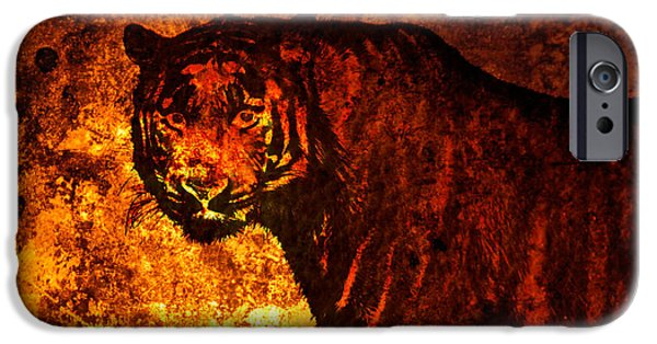 The Tiger iPhone Cases - African tiger  iPhone Case by Toppart Sweden