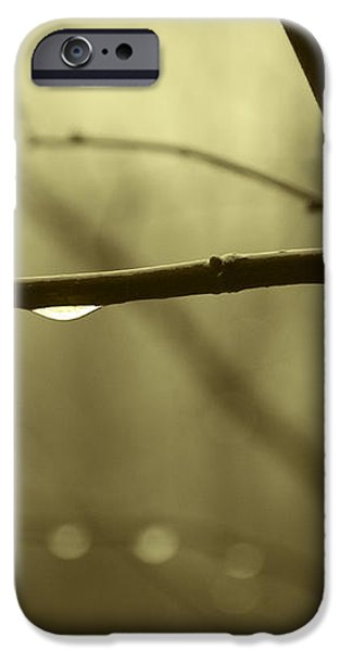 After It Rained iPhone Case by David Gordon
