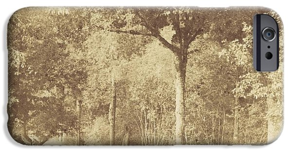 Nature Study Paintings iPhone Cases - After Nature iPhone Case by Henri Jean-louis The Secq