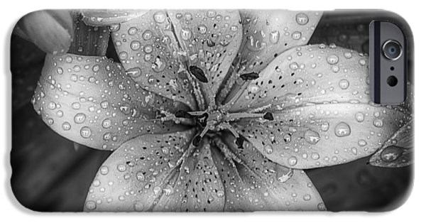 Monochrome iPhone Cases - After the Rain iPhone Case by Scott Norris