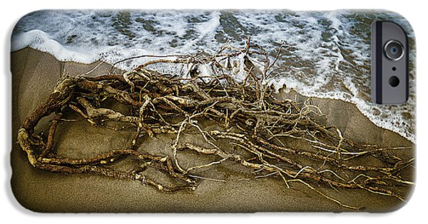 Driftwood iPhone Cases - After The Storm iPhone Case by Garry Gay