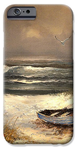 After The Storm Passed iPhone Case by Sandi OReilly