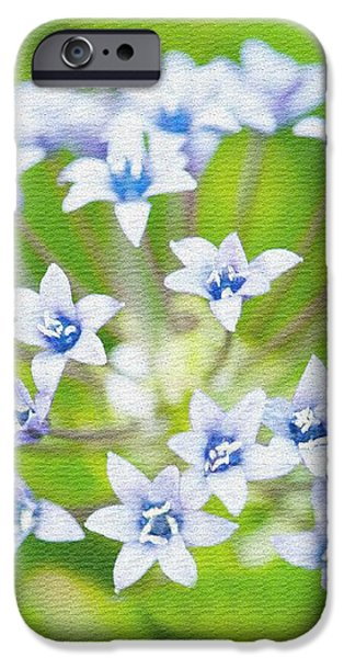 Agapantha Purple Flowers iPhone Case by Artist and Photographer Laura Wrede