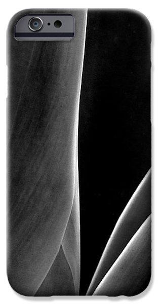 Raisa Gertsberg iPhone Cases - Agave iPhone Case by Ben and Raisa Gertsberg