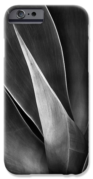Abstract Digital Photographs iPhone Cases - Agave No 3 iPhone Case by Ben and Raisa Gertsberg