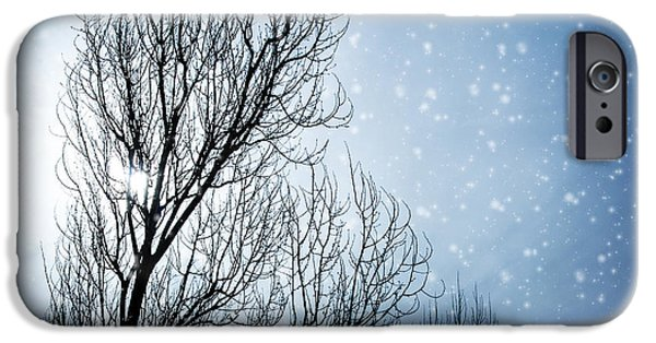Wintertime iPhone Cases - Aged tree in winter iPhone Case by Anna Omelchenko