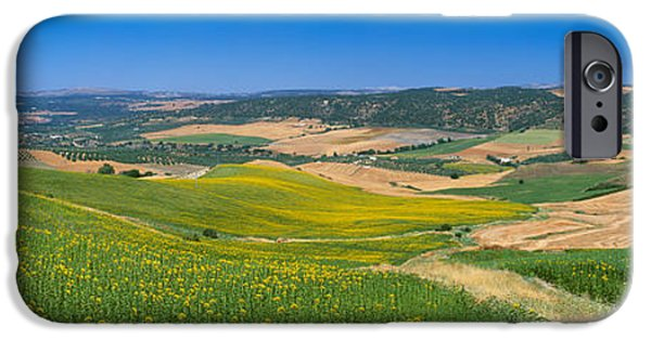 Malaga iPhone Cases - Agricultural Fields, Ronda, Malaga iPhone Case by Panoramic Images