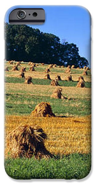 Agriculture - Contour Strips iPhone Case by Timothy Hearsum
