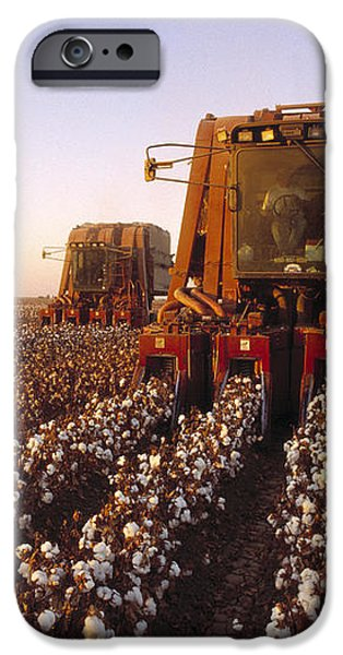 Agriculture - Cotton Harvesting  San iPhone Case by Ed Young