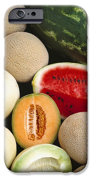 Agriculture - Mixed Melons, Watermelon iPhone Case by Ed Young