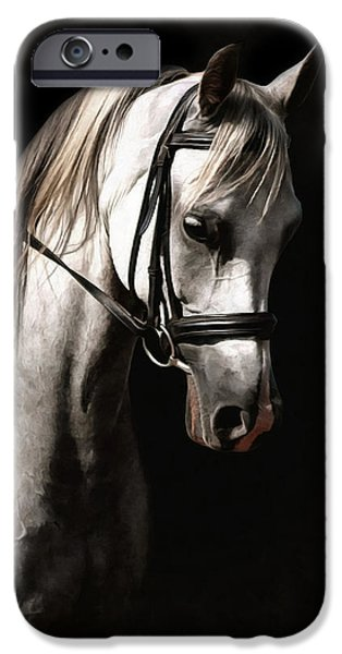 Horse iPhone Cases - Aint Miss Beehavin Too iPhone Case by CarolLMiller Photography