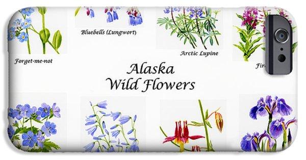 Columbine iPhone Cases - Alaska Wild Flower Poster iPhone Case by Sharon Freeman