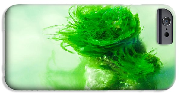 Alga iPhone Cases - Alga Dancer iPhone Case by Hannes Cmarits