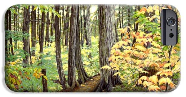Pastel iPhone Cases - Algonquin Park I iPhone Case by Susan Fraser