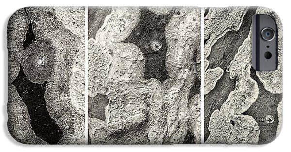 Alga iPhone Cases - Alien Triptych Landscape BW iPhone Case by Rudy Umans