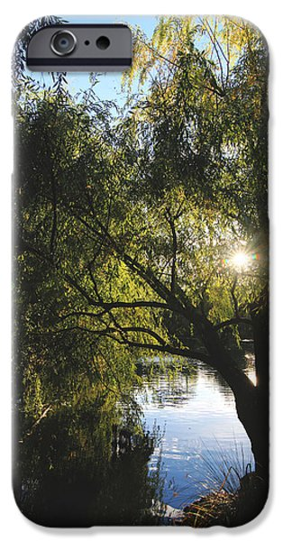 Chateau iPhone Cases - All Aglow iPhone Case by Laurie Search