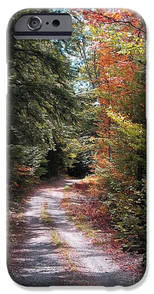 Forest iPhone Cases - All Roads Lead Here iPhone Case by Linda Marcille