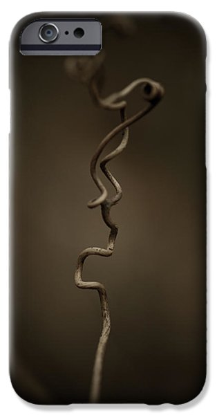 Vines iPhone Cases - All The In-betweens iPhone Case by Shane Holsclaw