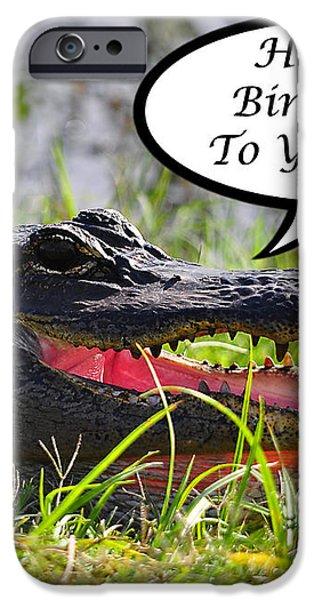 Alligator Birthday Card iPhone Case by Al Powell Photography USA