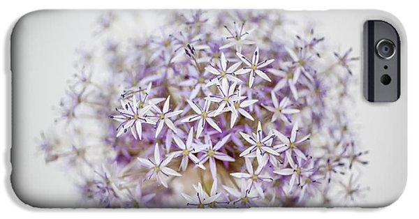 Alliums iPhone Cases - Allium flower iPhone Case by Elena Elisseeva