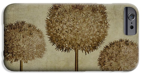 Alliums iPhone Cases - Allium hollandicum sepia textures iPhone Case by John Edwards