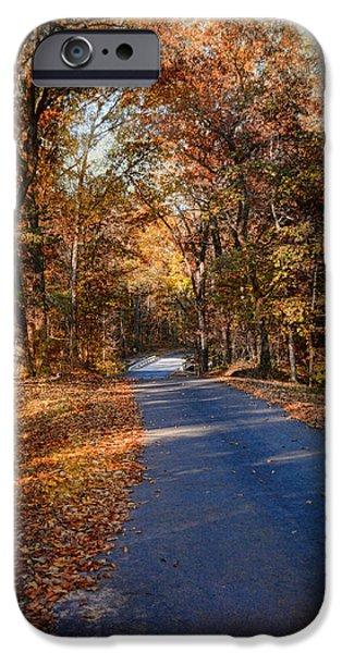 Fall Scenes iPhone Cases - Allure of Autumn iPhone Case by Jai Johnson