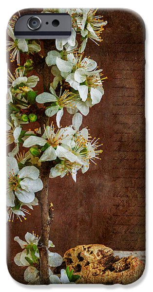 Almond Blossom iPhone Case by Marco Oliveira