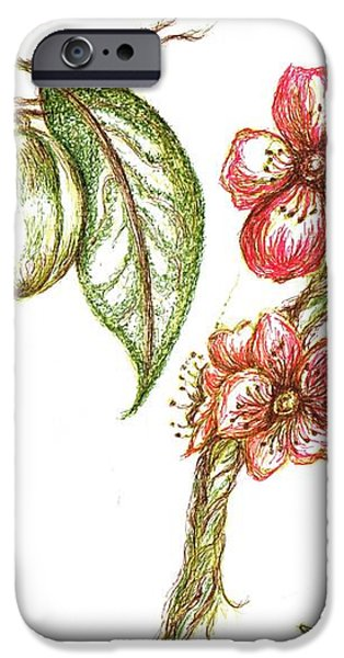 Almond with flowers iPhone Case by Teresa White