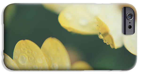 Raindrops iPhone Cases - Almost Close Enough to Touch iPhone Case by Laurie Search