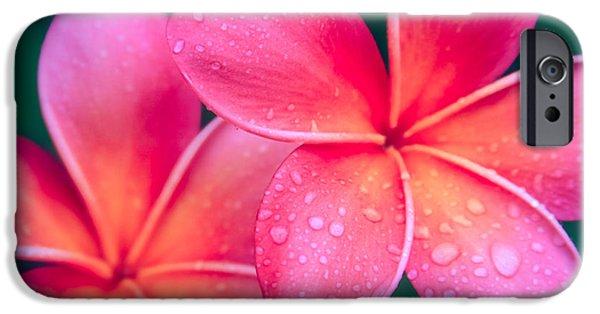 Sharon Mau iPhone Cases - Aloha Hawaii Kalama O Nei Pink Tropical Plumeria iPhone Case by Sharon Mau