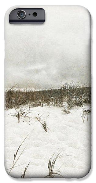Along the Cape Cod National Seashore iPhone Case by Michelle Wiarda