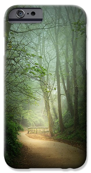Along The Path iPhone Case by Svetlana Sewell