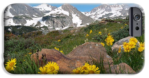 Pines iPhone Cases - Alpine Sunflower Mountain Landscape iPhone Case by Cascade Colors