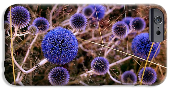 Thistle iPhone Cases - Alternate Universe iPhone Case by Rona Black