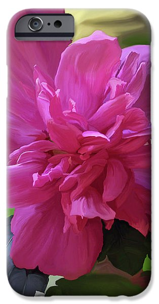 Althea Hibiscus I iPhone Case by Patricia Griffin Brett