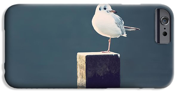Seabird iPhone Cases - Am I Alone iPhone Case by Wim Lanclus