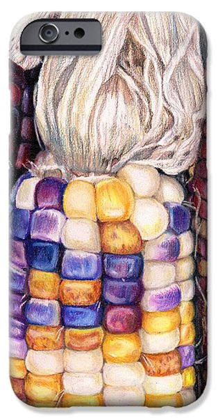Crops Drawings iPhone Cases - aMAIZEd iPhone Case by Shana Rowe