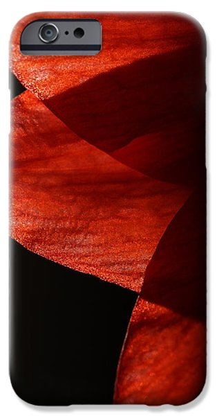 Nature Abstract iPhone Cases - Amaryllis Abstract iPhone Case by Karol  Livote