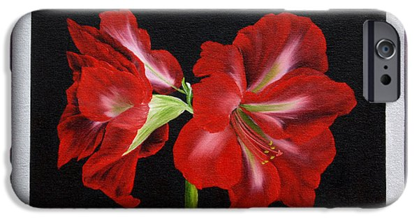 """indoor"" Still Life Paintings iPhone Cases - Amaryllis iPhone Case by  ILONA ANITA TIGGES - GOETZE  ART and Photography"