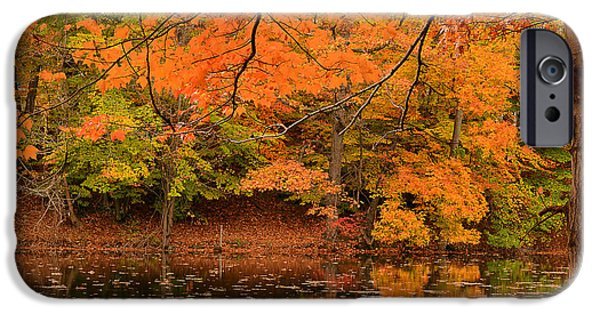 Autumn In New England iPhone Cases - Amber Afternoon iPhone Case by Lourry Legarde