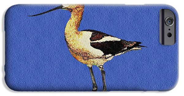 Business Digital Art iPhone Cases - American Avocet Bird iPhone Case by David Dehner
