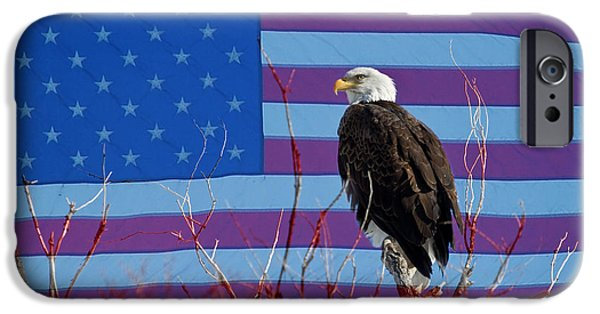 Constitution iPhone Cases - American Bald Eagle 3 iPhone Case by James BO  Insogna