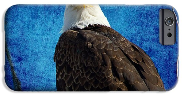 Constitution iPhone Cases - American Bald Eagle Blues iPhone Case by James BO  Insogna