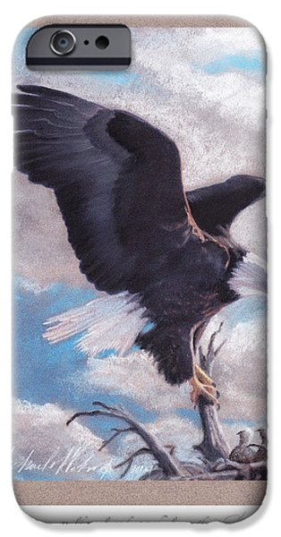 American Eagle Pastels iPhone Cases - American Bald Eagle II iPhone Case by Michael  Weber