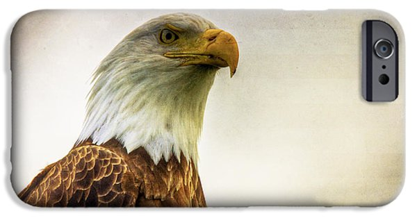 4th July Photographs iPhone Cases - American Bald Eagle with Flag iPhone Case by Natasha Bishop