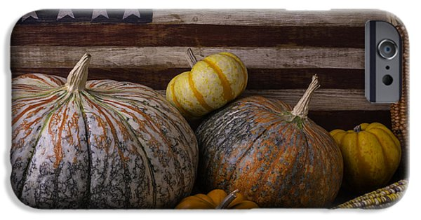 Gourd iPhone Cases - American Flag Autumn Still Life iPhone Case by Garry Gay
