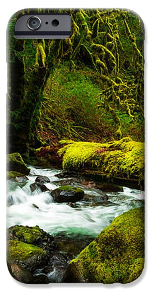 American Jungle iPhone Case by Chad Dutson